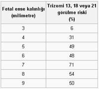 �kili Tarama Testi (11-14 Testi)-1.png