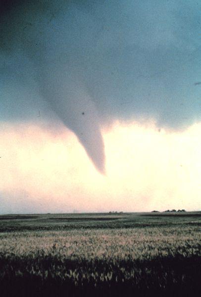 Ad:  406px-Tornado_at_beginning_of_life_-_NOAA.jpg Gösterim: 837 Boyut:  27.0 KB