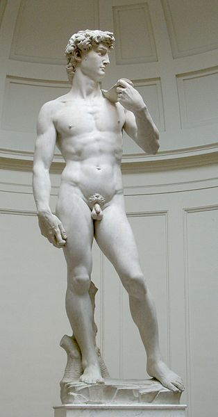Ad:  David_von_Michelangelo.jpg Gösterim: 1419 Boyut:  22.8 KB
