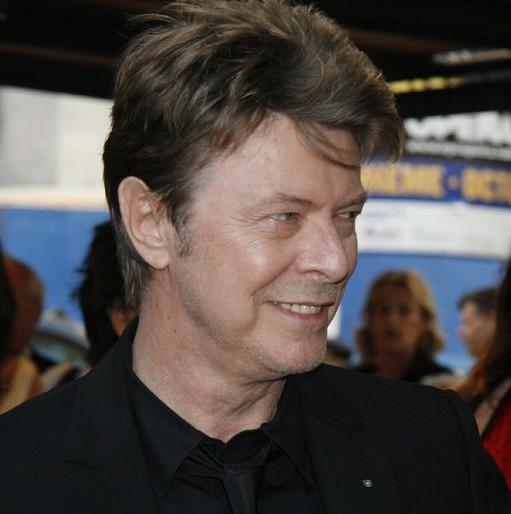 Ad:  David_Bowie.jpg G�sterim: 56 Boyut:  51.2 KB