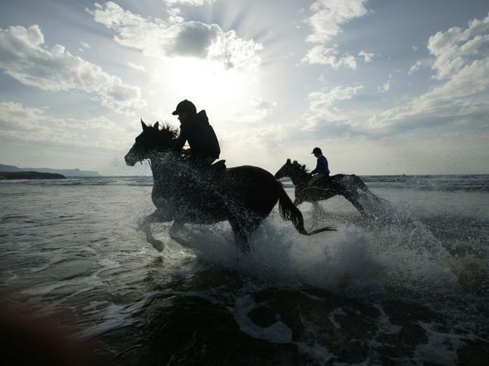 Ad:  horses-and-water-1024-768-6404.jpg Gösterim: 148 Boyut:  42.4 KB