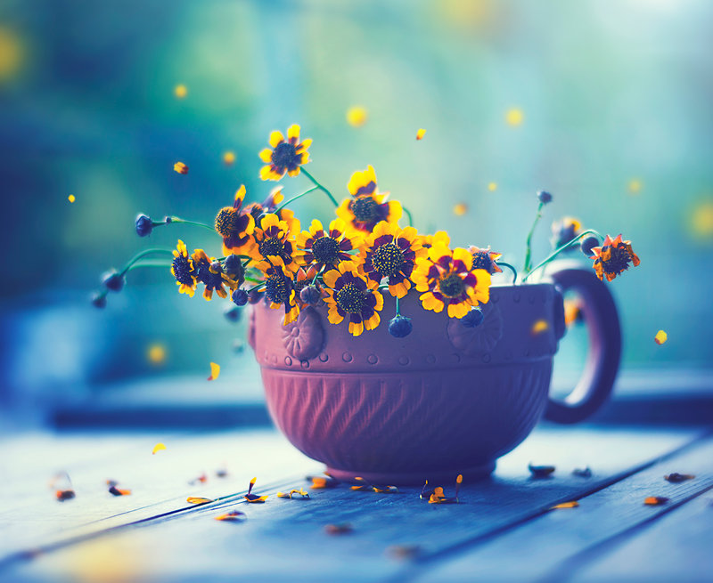Ad:  happy_everyday_by_arefin03-d95t29l.jpg