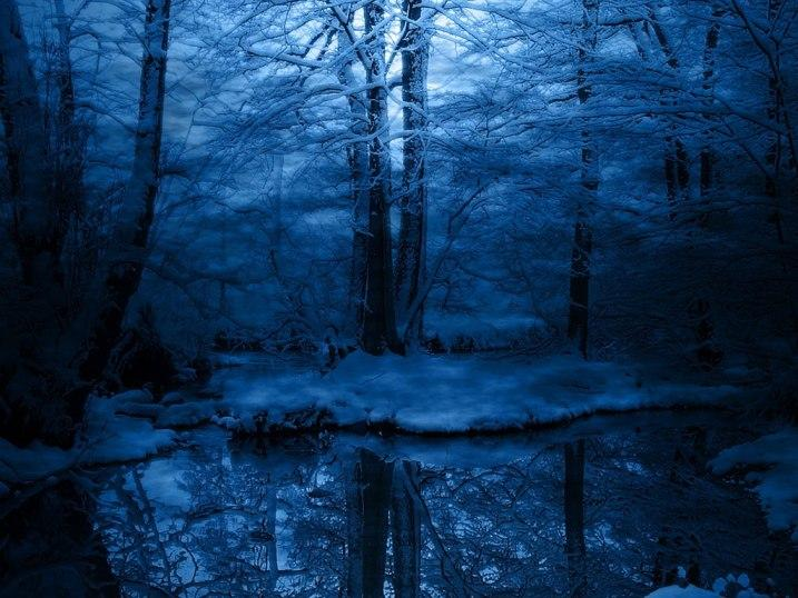 Ad:  bosque.jpg Gösterim: 388 Boyut:  72.8 KB