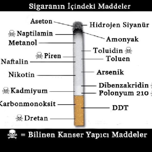 Ad:  sigara18.jpg Gösterim: 270 Boyut:  48.8 KB