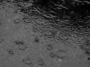 Ad:  yağmur3.jpg Gösterim: 331 Boyut:  19.7 KB