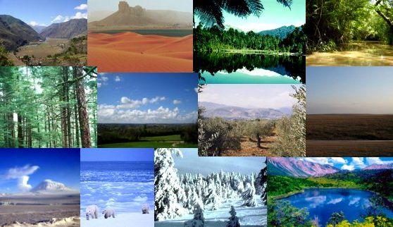 İklim nedir ve başına ne gelir
