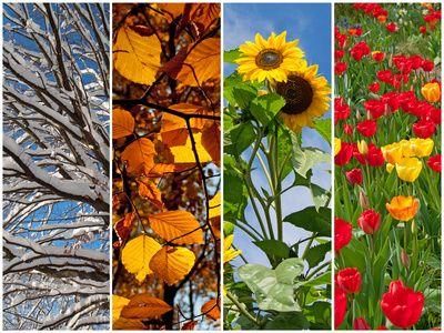 Mevsimlerin Oluşumu ve Özellikleri