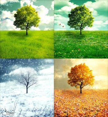 Ad:  mevsim1.jpg Gösterim: 677 Boyut:  38.7 KB