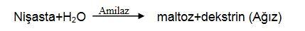 48309d1461956742 sindirim sistemi nedir sindirim sisteminin yapisi ve gorevleri khsin1