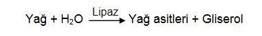 Ad:  ya.sin1.JPG Gösterim: 299 Boyut:  11.7 KB