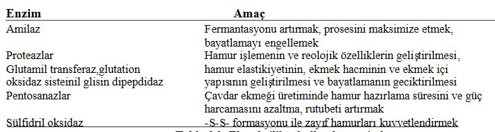 48462d1462220384 enzim nedir enzimler hakkinda e11