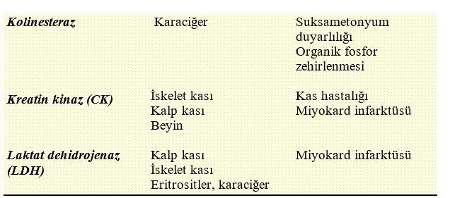 DİLİMLİ BORDÜRLÜ PATİĞİN BAŞKA VERSİYONU TARİFİ