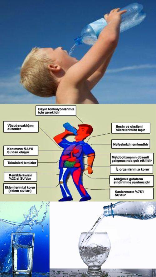 49302d1464141999 besin ogesi olarak su ve beslenmedeki onemi su1