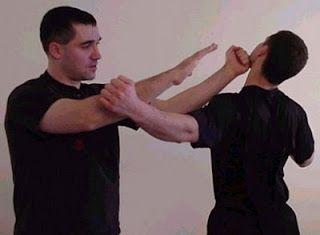 Ad:  Wing Chun-3.jpg Gösterim: 358 Boyut:  9.3 KB