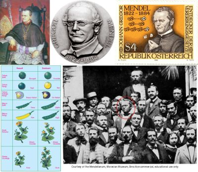 Ad:  Gregor Mendel1.jpg Gösterim: 502 Boyut:  41.6 KB