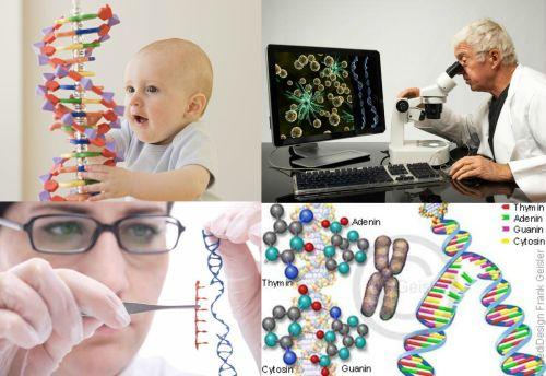 Ad:  Genetik 1.jpg Gösterim: 5548 Boyut:  38.7 KB