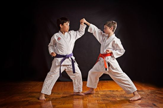 Ad:  Karate-Do-2.jpg G�sterim: 61 Boyut:  27.3 KB