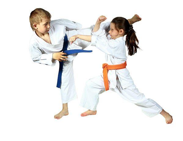 Ad:  Karate-Do.jpg G�sterim: 35 Boyut:  26.2 KB