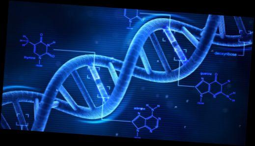 50919d1465950427 gen nedir gen hakkinda genel bilgiler dna