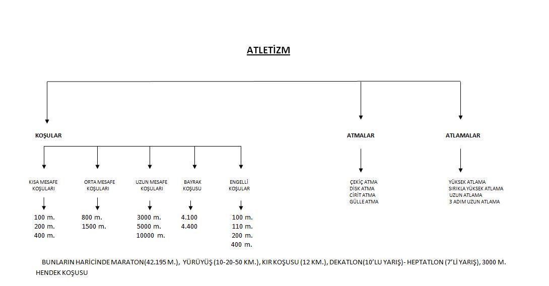 Ad:  Atletizim Spor Dallarının Şeması.jpg Gösterim: 3297 Boyut:  40.6 KB