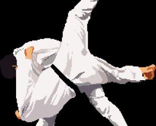Ad:  judo.jpg G�sterim: 48 Boyut:  10.4 KB