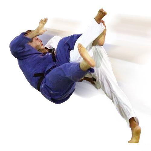 Ad:  judo-6.jpg G�sterim: 65 Boyut:  20.6 KB