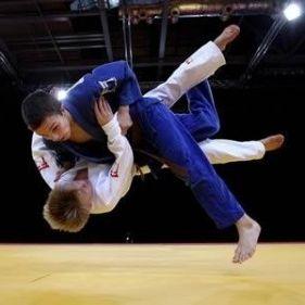 Ad:  judo-7.jpg G�sterim: 59 Boyut:  13.0 KB