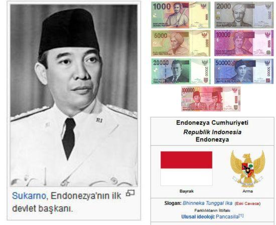 Ad:  Endonezya1.jpg Gösterim: 306 Boyut:  40.4 KB