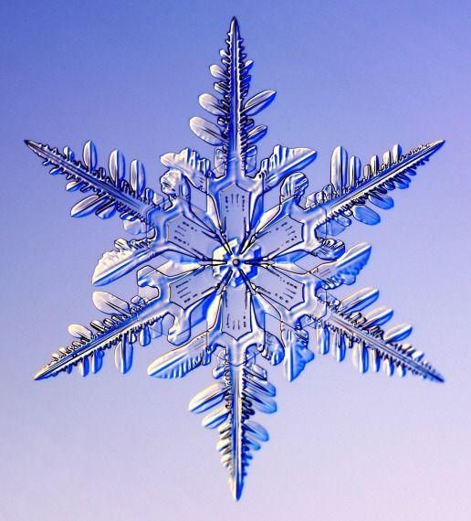 Ad:  kar_kristalleri.jpg Gösterim: 307 Boyut:  52.9 KB