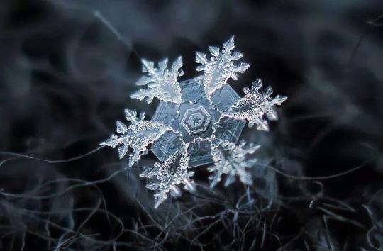 Ad:  kar_kristalleri4.jpg Gösterim: 144 Boyut:  55.3 KB