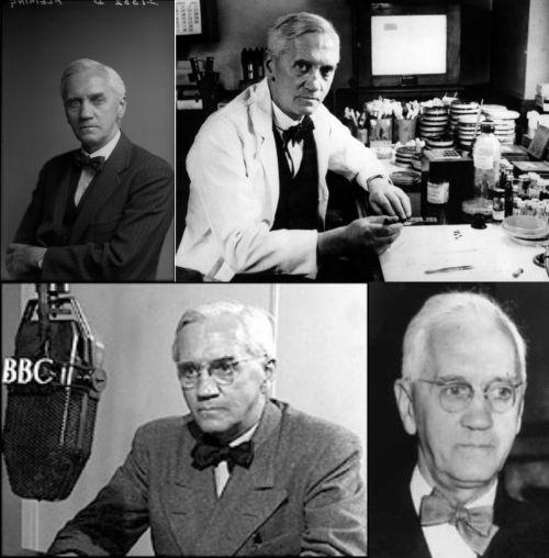 Ad:  Sir Alexander Fleming4.jpg G�sterim: 72 Boyut:  42.8 KB
