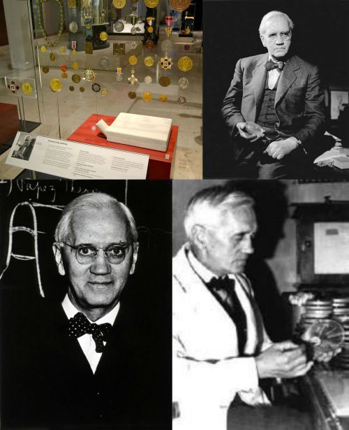 an overview of career of sir alexander fleming Transcript of sir alexander fleming sir alexander fleming education he attended the louden moor school, the darvel school and kilmarnock academy before moving to london in 1895, where he lived with his older brother.