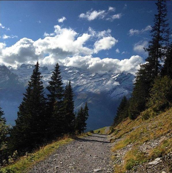 Ad:  doğa bulut ağaç yol.jpg Gösterim: 137 Boyut:  89.6 KB
