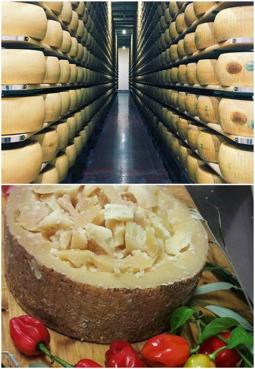 Ad:  peynircilik.jpg Gösterim: 381 Boyut:  73.7 KB