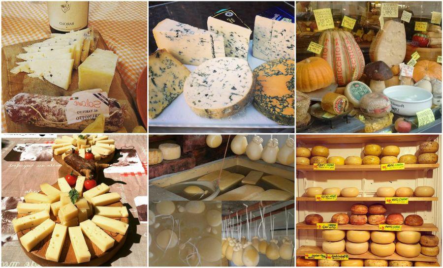 Ad:  Peynir Resimleri.jpg Gösterim: 356 Boyut:  118.9 KB