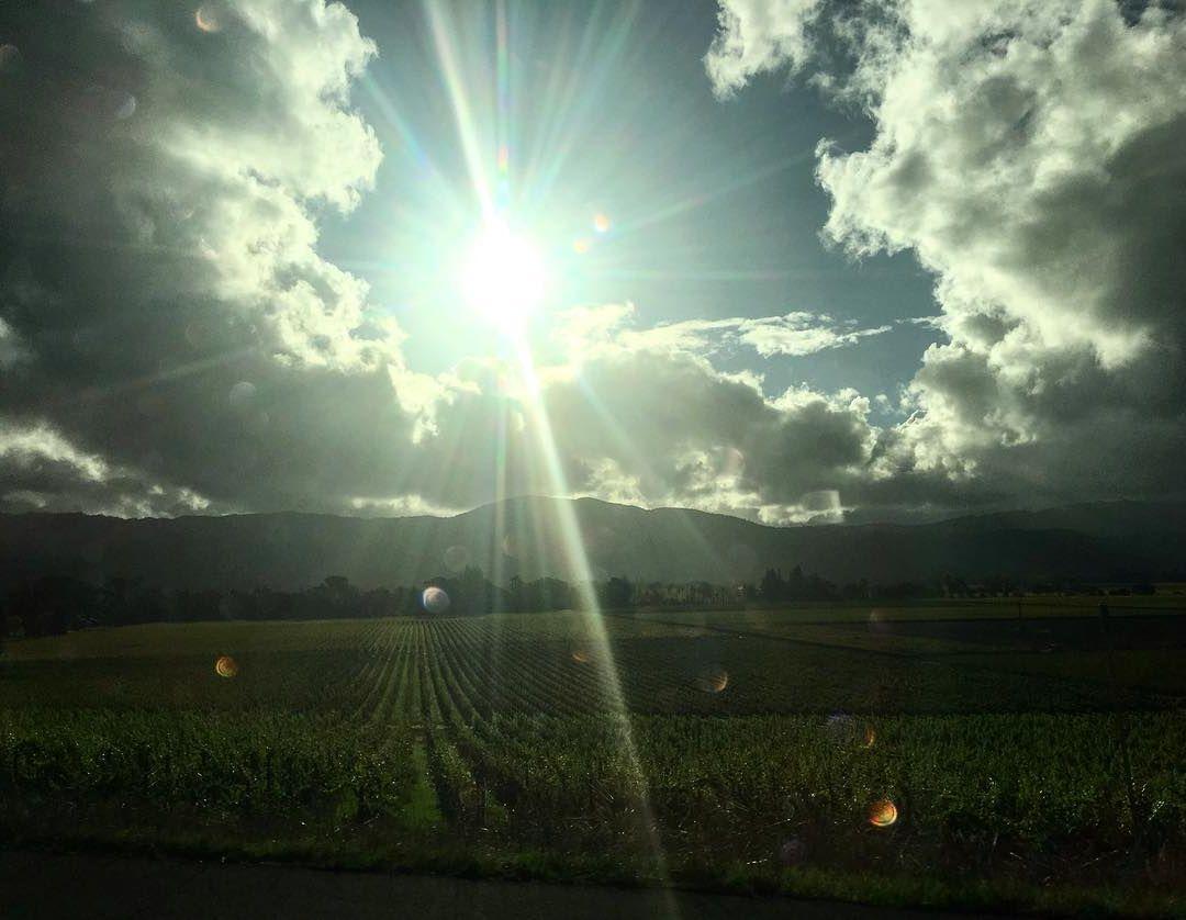 Ad:  güneş marioncotillard.jpg Gösterim: 187 Boyut:  88.0 KB