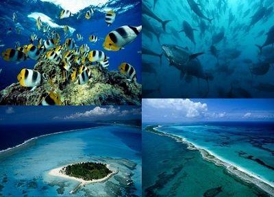 Ad:  okyanus.JPG Gösterim: 113 Boyut:  28.3 KB