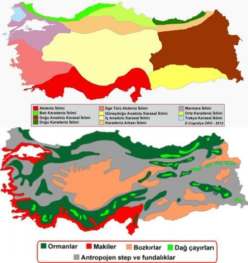Ad:  Türkiye'nin İklimi ve Bitki Örtüsü2.jpg Gösterim: 1944 Boyut:  44.5 KB