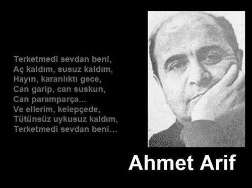 Ad:  ahmet_arif1.JPG Gösterim: 230 Boyut:  25.1 KB