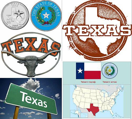 Ad:  Teksas (Texas)1.jpg Gösterim: 534 Boyut:  68.3 KB
