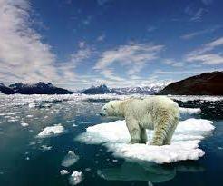 Ad:  Antarktika-5.jpg Gösterim: 540 Boyut:  11.0 KB