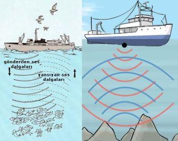 Ad:  sonar2.JPG Gösterim: 528 Boyut:  28.1 KB