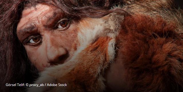 Ad:  Screenshot_2019-11-29 Düşük Doğurganlık Oranları Neandertal Yok Oluşuna Zemin Hazırladı ».png Gösterim: 40 Boyut:  573.1 KB