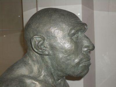Ad:  neander7.jpg Gösterim: 7 Boyut:  52.9 KB