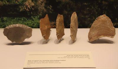 Ad:  neander15.jpg Gösterim: 17 Boyut:  13.0 KB