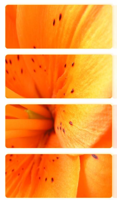 Ad:  __fire_lilly___by_I_magine.jpg Gösterim: 114 Boyut:  31.3 KB